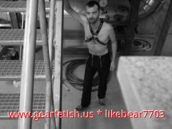 likebear7703